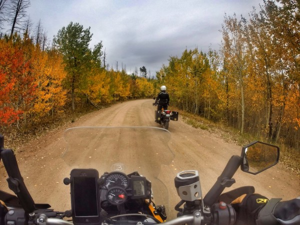 Riding the Aspens